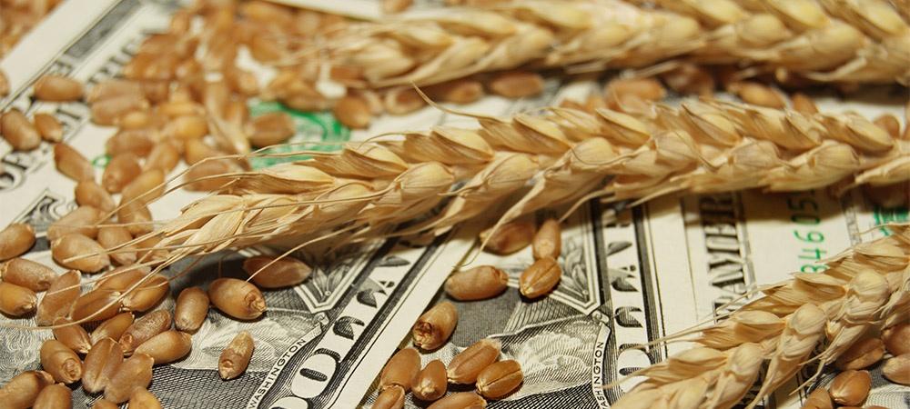 Cash and Wheat.jpg