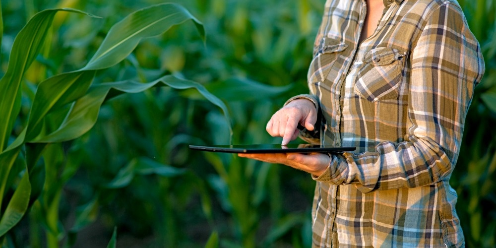 Farm Manager, Are You Looking at These 6 Financial Measures?