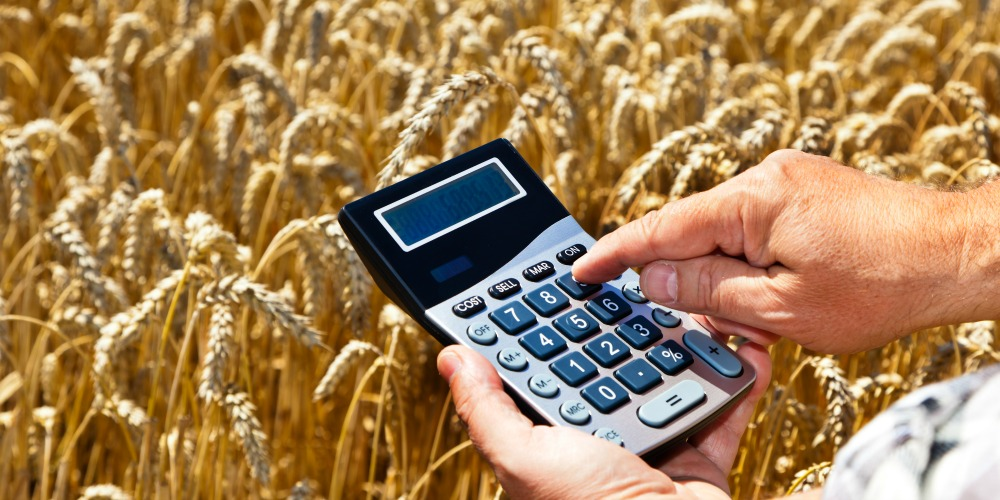 Does Your Farm Software Provide Tax, Credit, and Management Information?